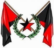 anarcho-syndicalist_LSOC